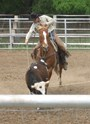 Scott competes in ranch rodeos throughout North Texas for fun.